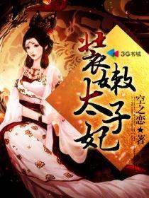 装嫩太子妃小说封面
