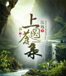 上苍图录小说封面