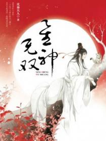 星神无双小说封面