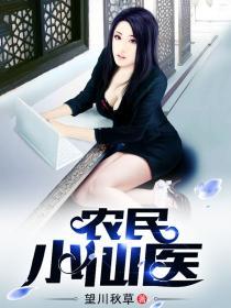 农民小仙医小说封面