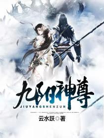 九阳神尊小说封面