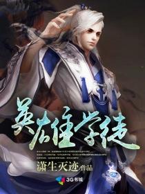 英雄学徒小说封面