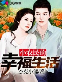 小农民的幸福生活小说封面