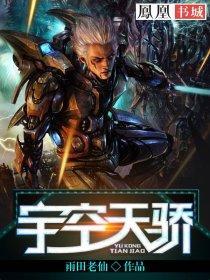 宇空天骄小说封面