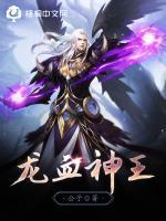 龙血神王小说封面