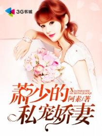 萧少的私宠娇妻小说封面