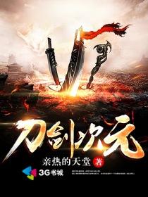 刀剑次元小说封面