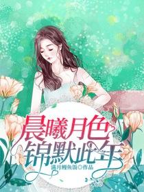 晨曦月色锦默此年小说封面