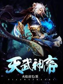 天武神帝小说封面