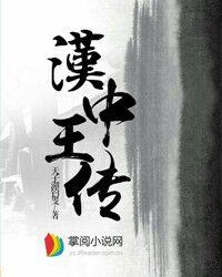 汉中王传小说封面