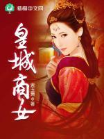 皇城商女小说封面