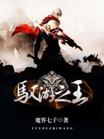 驭游之王小说封面
