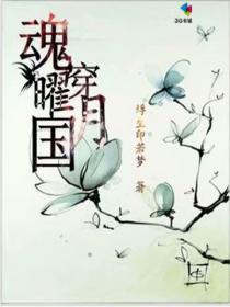 魂穿,曜月国小说封面
