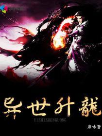 异世升龙小说封面