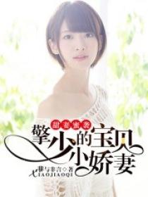 甜妻蜜袭:擎少的宝贝小娇妻小说封面