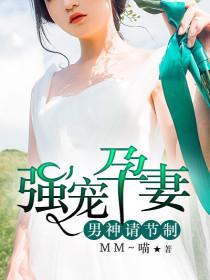 强宠孕妻:男神请节制小说封面
