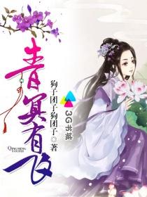 青冥有飞小说封面