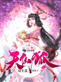 天仙狐双生箓小说封面