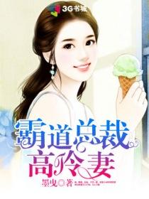 霸道總裁高冷妻小說封面