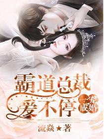 一宠成婚:霸道总裁爱不停小说封面