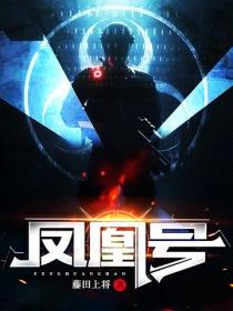 鳳凰號小說封面