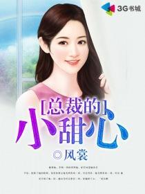 總裁的小甜心小說封面