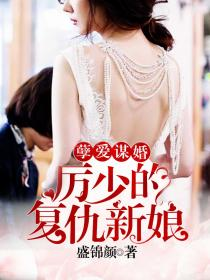 孽爱谋婚:厉少的复仇新娘小说封面