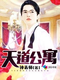 天道公寓小说封面