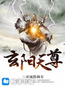 玄阳天尊小说封面