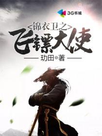 锦衣卫之飞镖大使小说封面