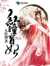 红瞳盲妃小说封面