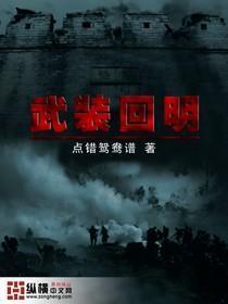 武装回明小说封面