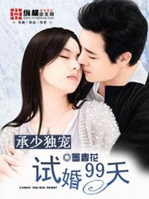 承少独宠:试婚99天小说封面