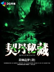 契丹秘藏小说封面