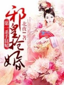 邪皇抢婚:第一杀手狂妃小说封面