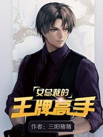 女总裁的王牌高手小说封面