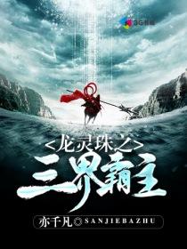 龙灵珠之三界霸主小说封面