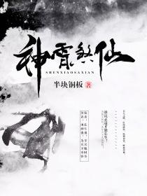 神霄煞仙小说封面