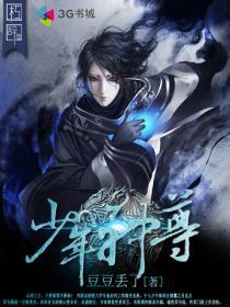 少年神尊小说封面