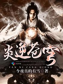 炎逆苍穹小说封面