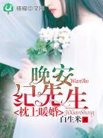 枕上暖婚:晚安,纪先生小说封面