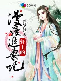 轩王的漫漫追妻记小说封面