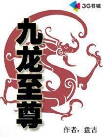九龙至尊小说封面