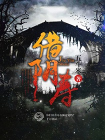 借阴寿小说封面