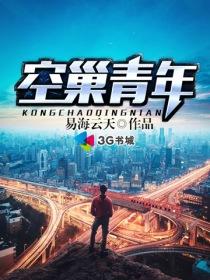 空巢青年小说封面