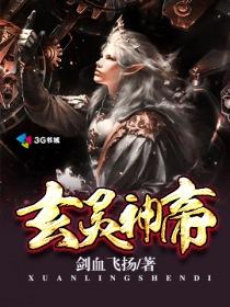 玄灵神帝小说封面