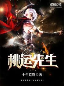 桃运先生小说封面