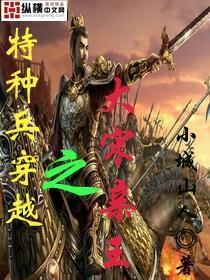 特种兵穿越之大宋亲王小说封面