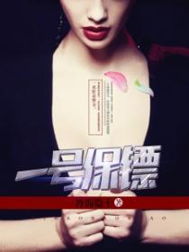 一号保镖小说封面