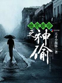 绝代妖孽之神偷小说封面